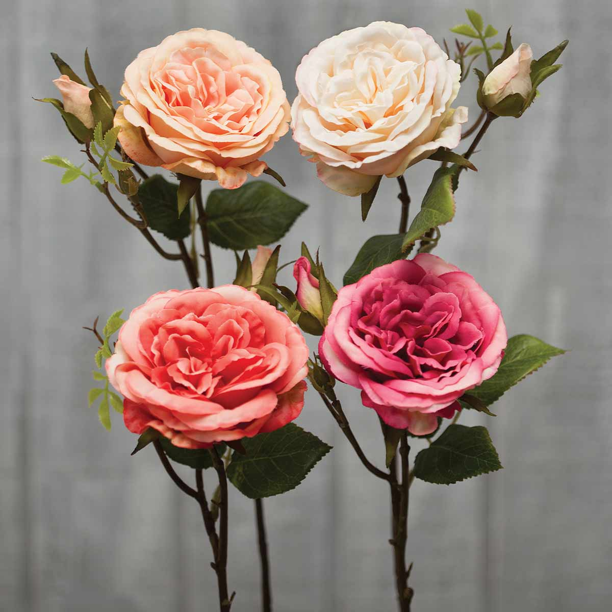 """Cabbage Rose with Bud 15"""" Assortment Pack 12 Units"""