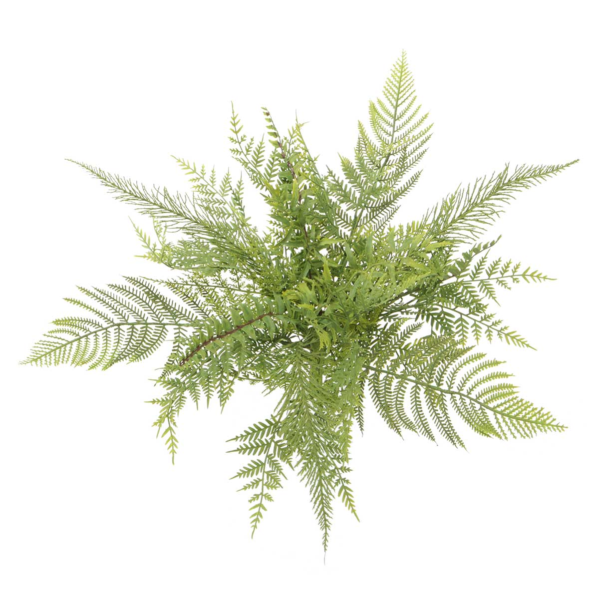 "Mixed Meadow Fern 22""x16.5"""