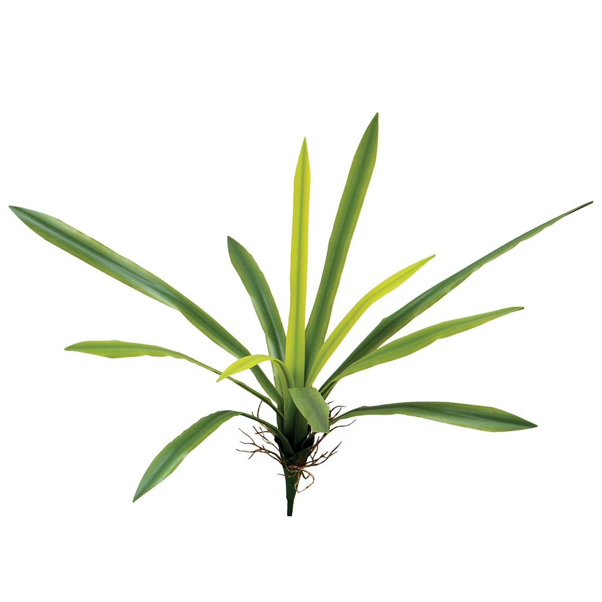 "Broadleaf Plant with 12 leaves 10""x21"""