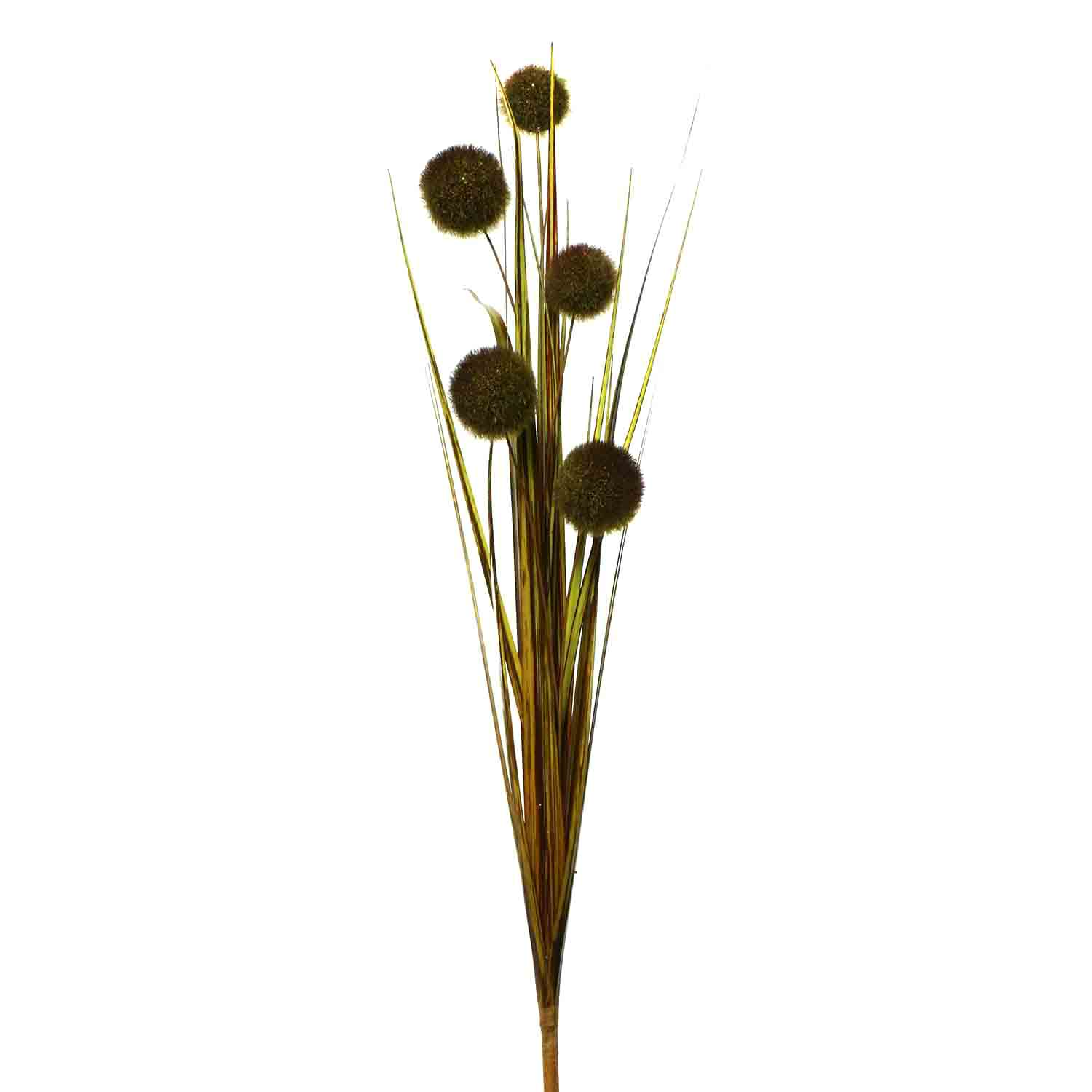 "POM POM GRASS SPRAY 42"" GREEN"