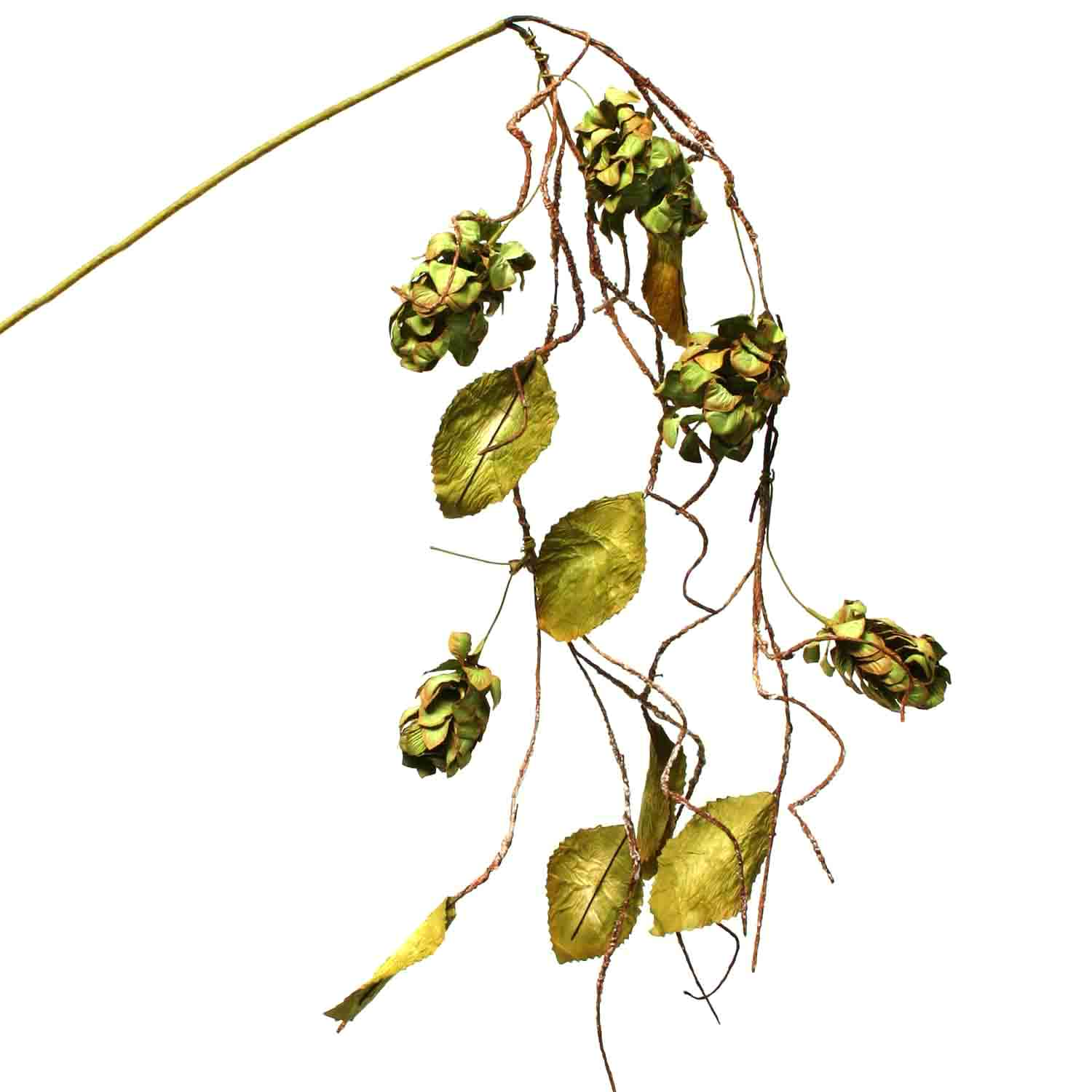 "DRIED HOPS 44"" HANGING SPRAY Sage"