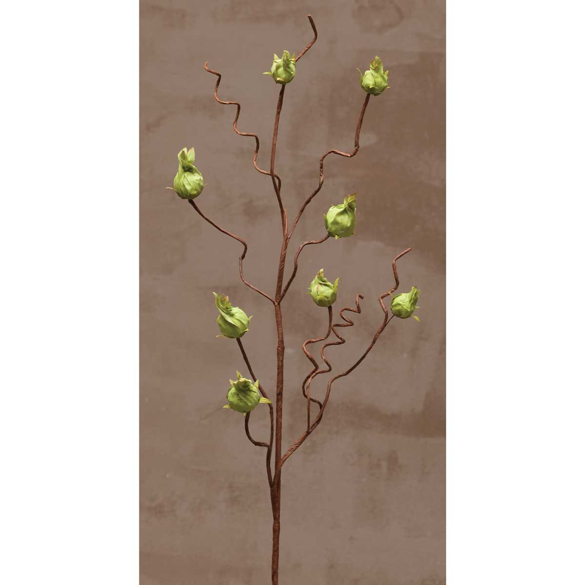 "DRIED LANTERN 35"" SPRAY Green"