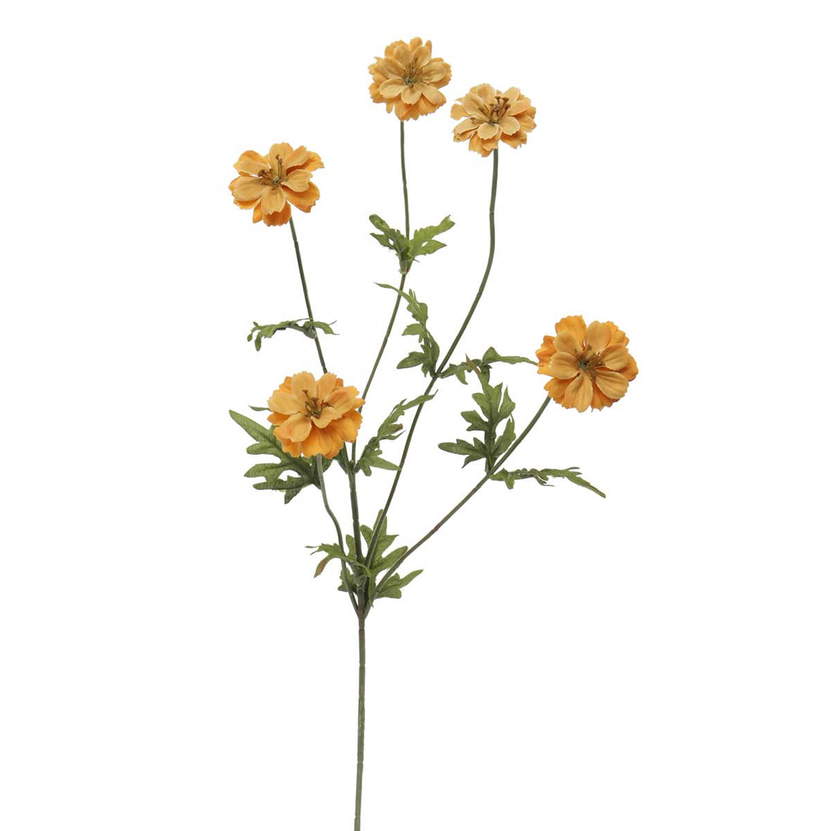 "OCTOBER COREOPSIS SPRAY 2""X29"""