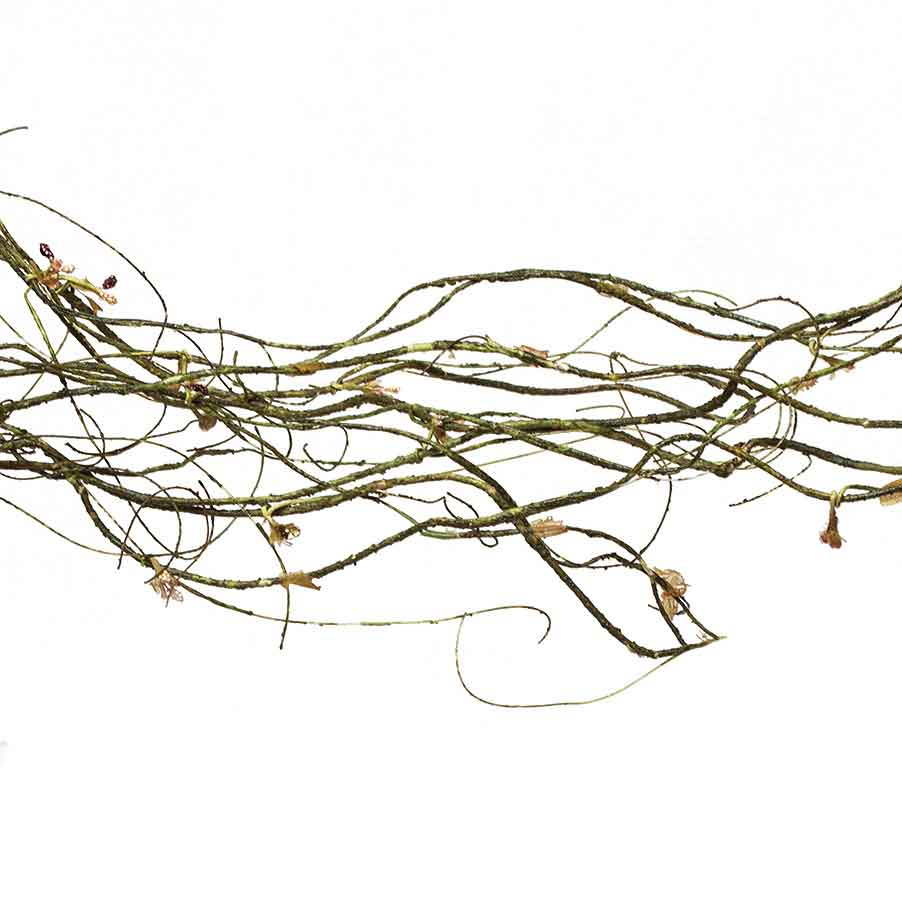 TWIG GARLAND 12' GREEN