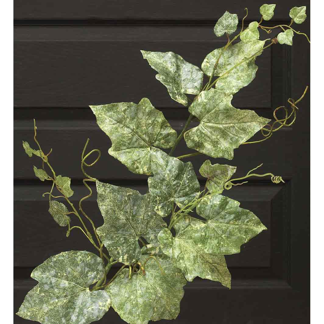 "M8477 GRAPE LEAF 39"" SPRAY - EACH b50"