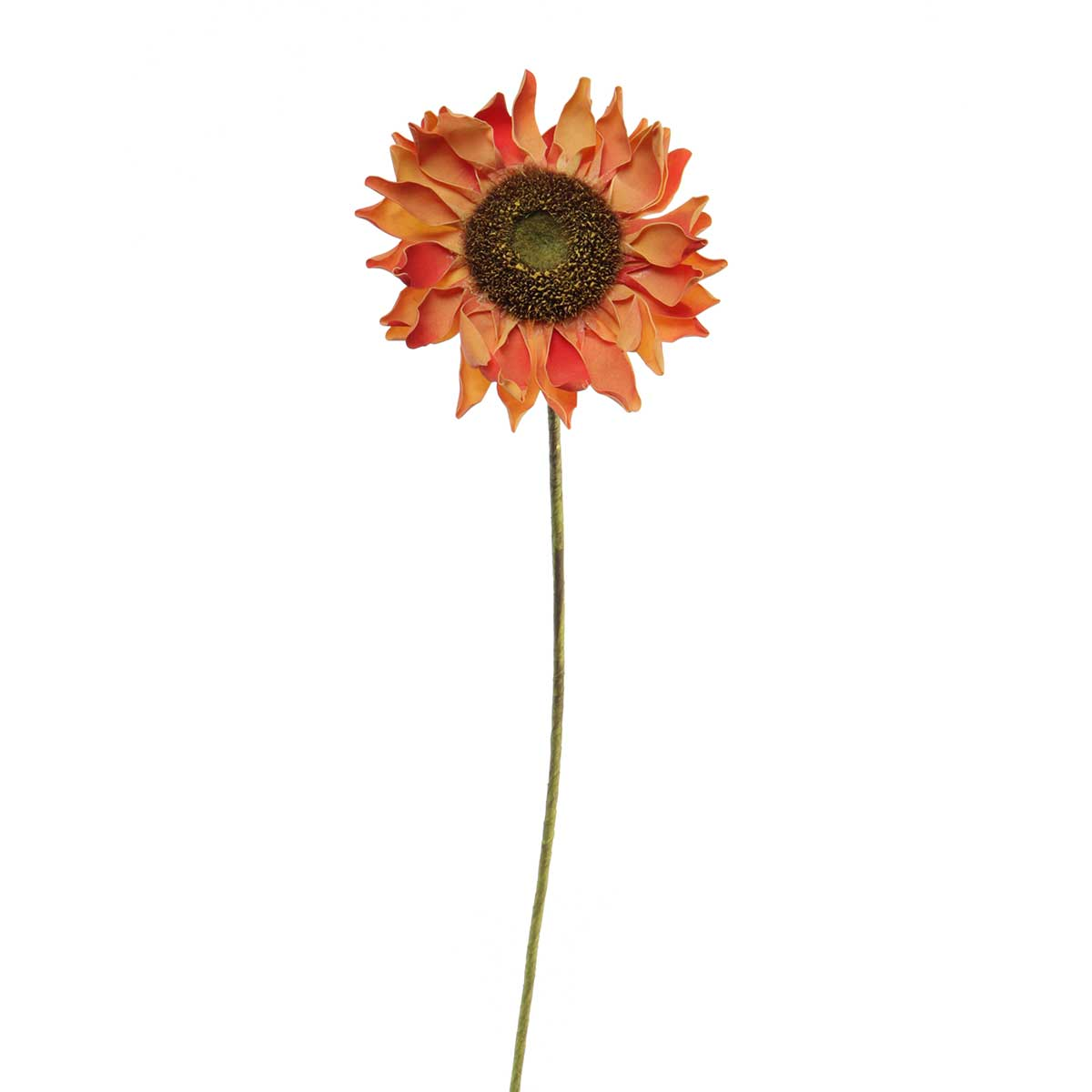 "M8671 CO DESERT SUNFLOWER 7""X34"" CORAL - EACH 50b"