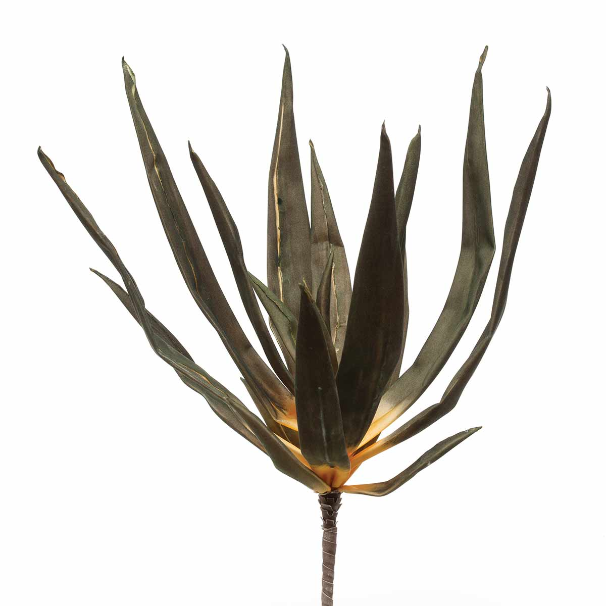 "M8680 GREEN AGAVE BUSH 22""-EACH 50b"