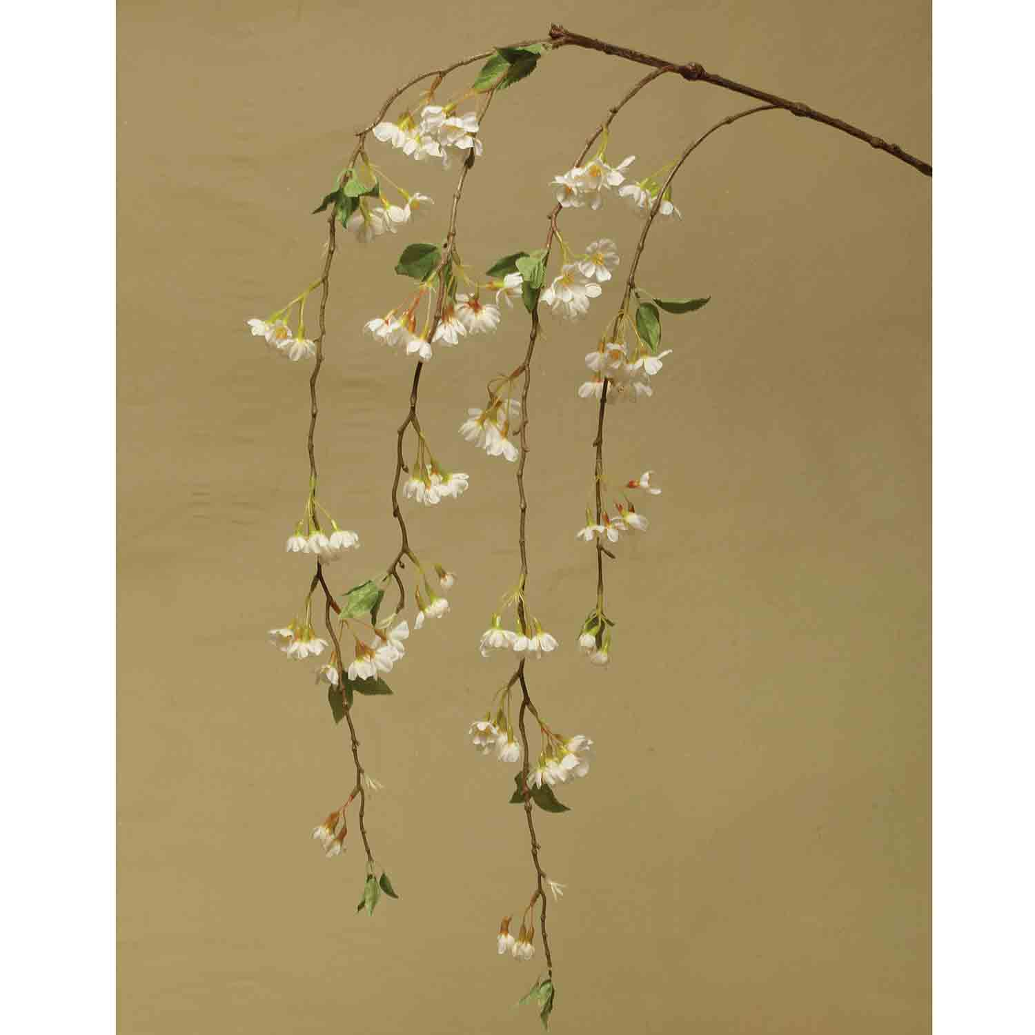 "WEEPING CHERRY BLOSSOM 57"" WHITE *22v"