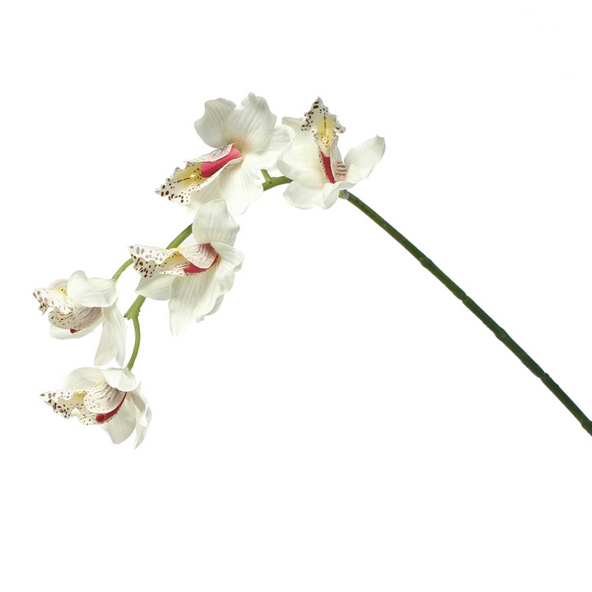 "CYMBIDIUM SPRAY 22"" WHITE/CREAM *22v"