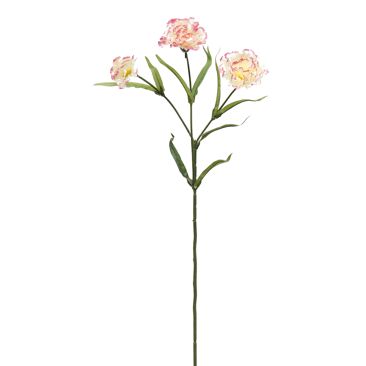 "FRENCH CARNATION SPRAY X3 25"" PEPPERMINT M8961 PP *50sp"