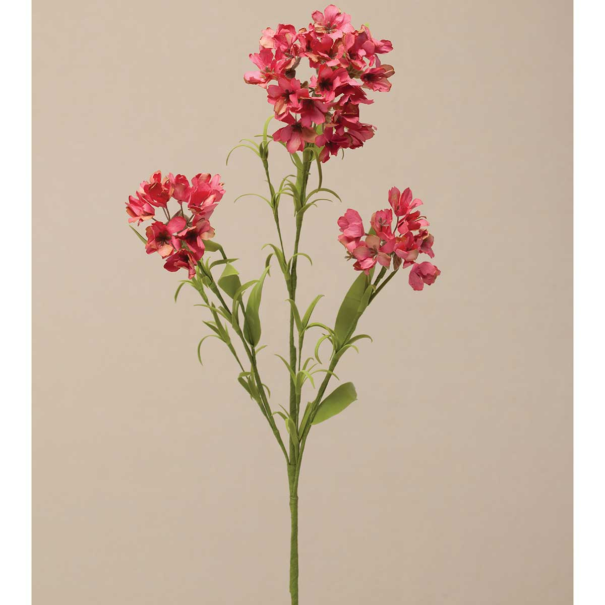 Garden Phlox Spray 31� Salmon M9257 SL v22