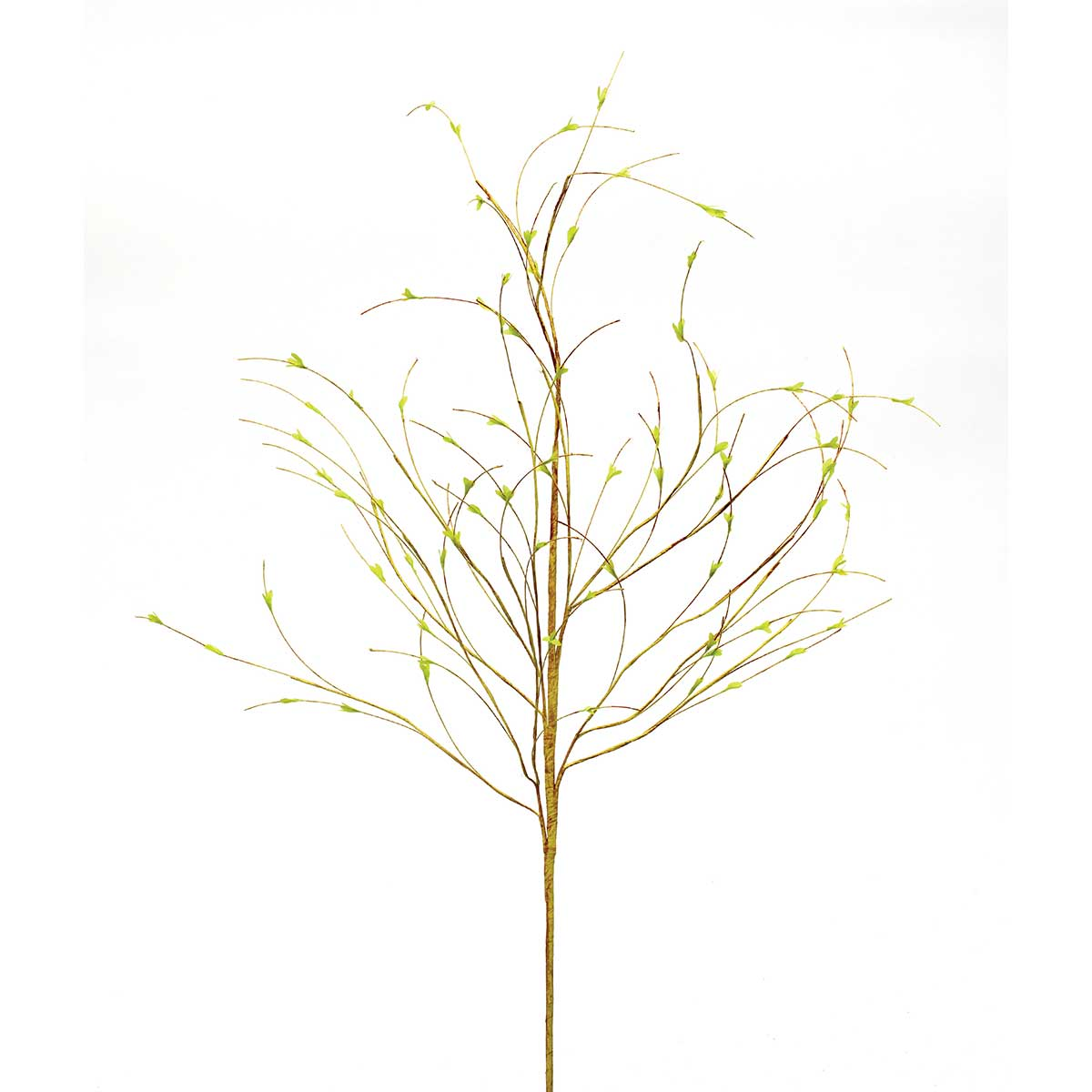 Privet Leaf Branch 48� Light Green M9290