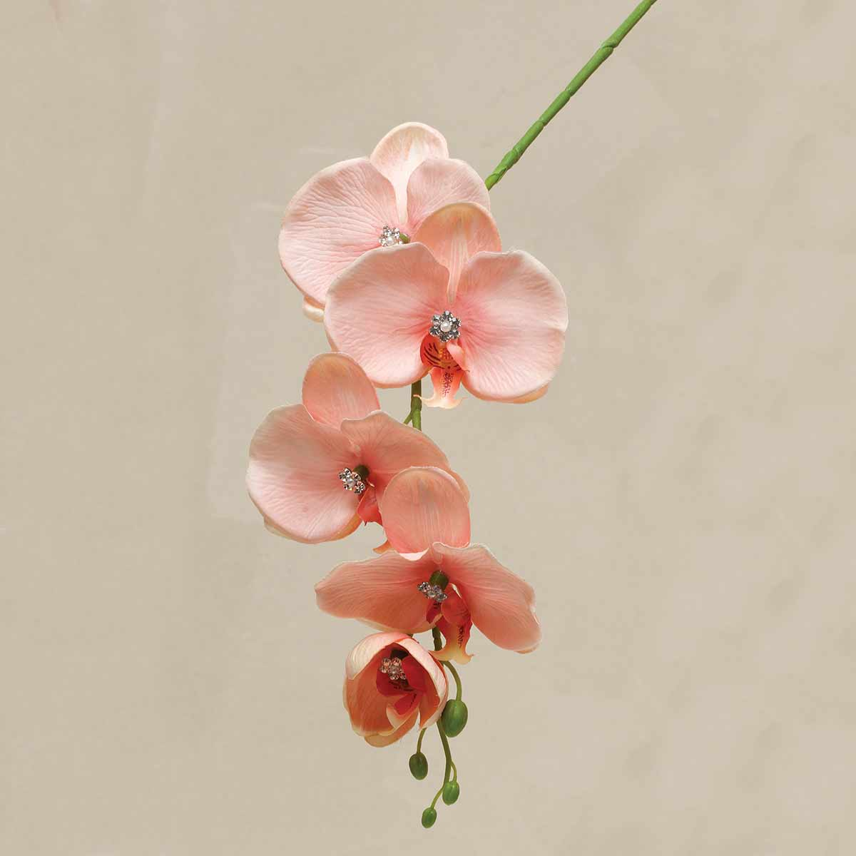 "GALA ORCHID WITH GEM CENTER 5""X26"" PEACH"