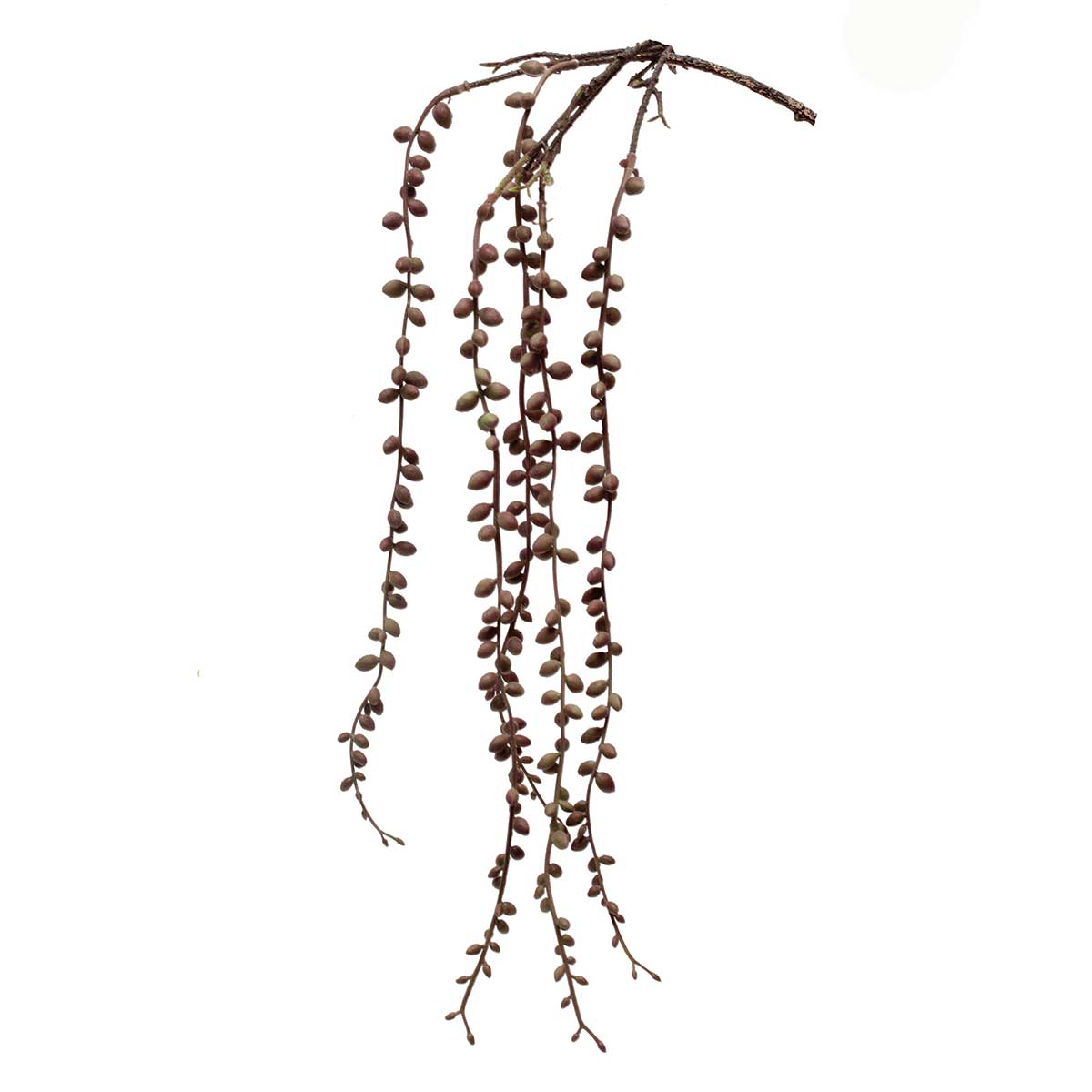 "Hanging String of Pearls 5""x29"" Olive"