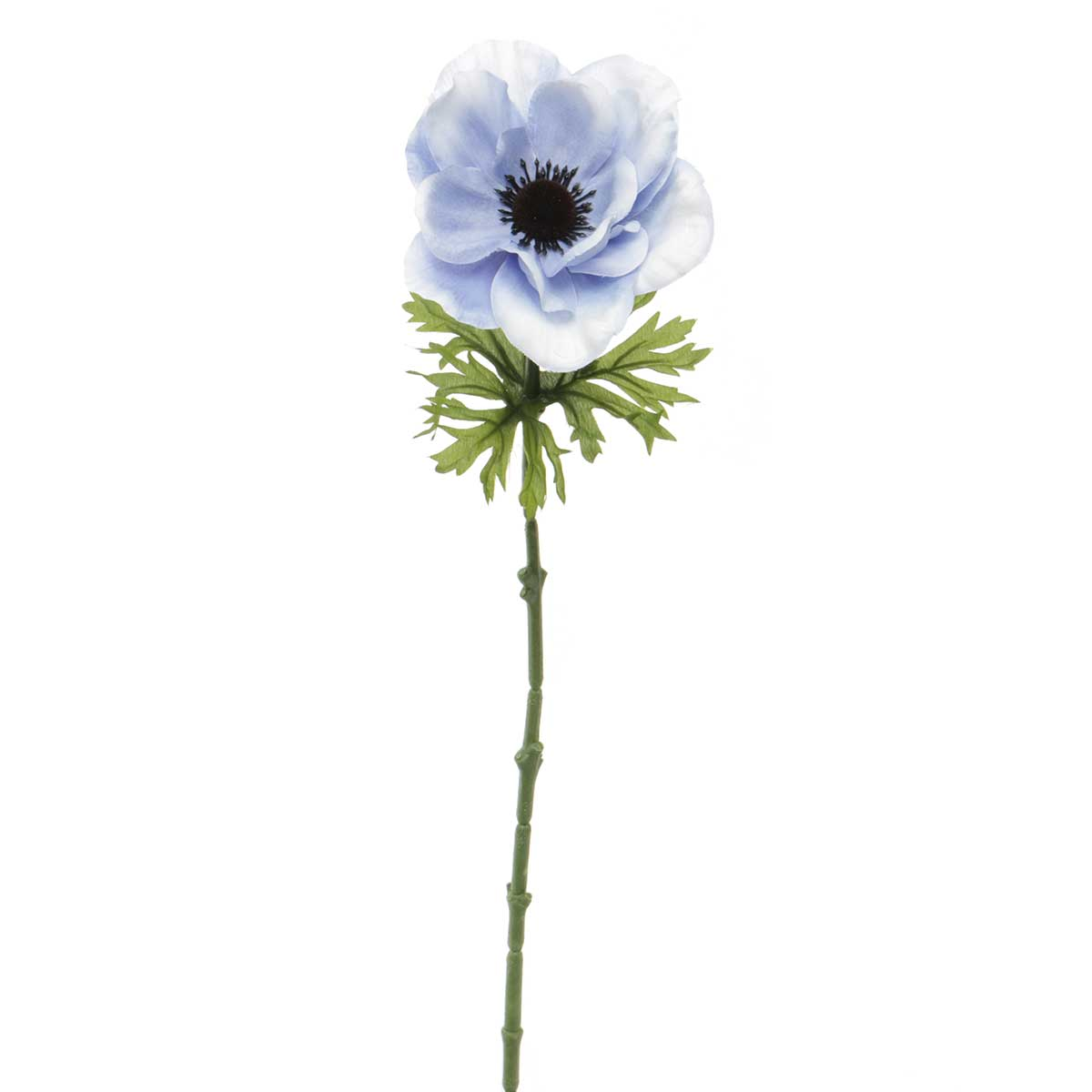 "French Blue Anemone X 14""x23"" Periwinkle"