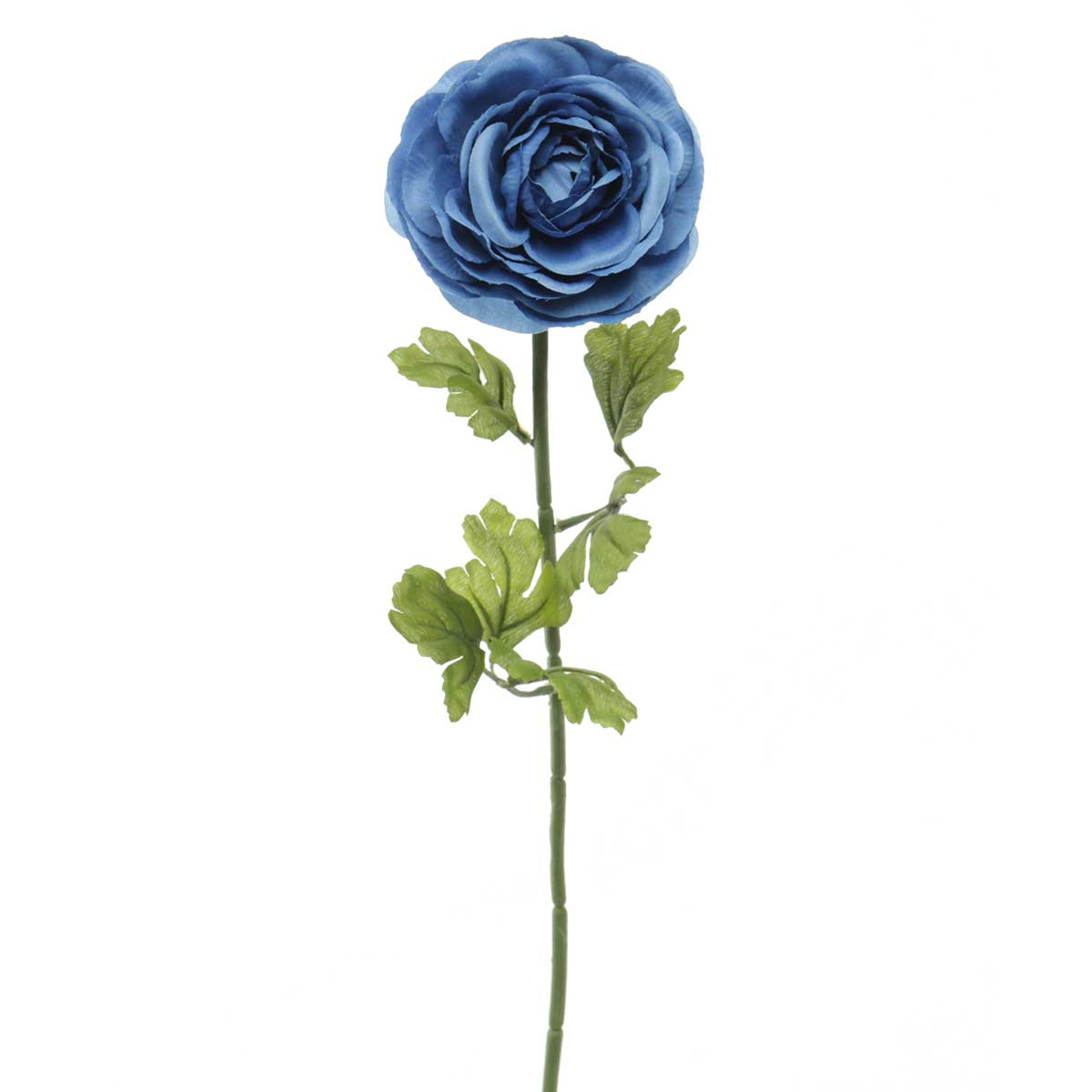 "French Blue Ranunculus X1 3""x23"" Cobalt"