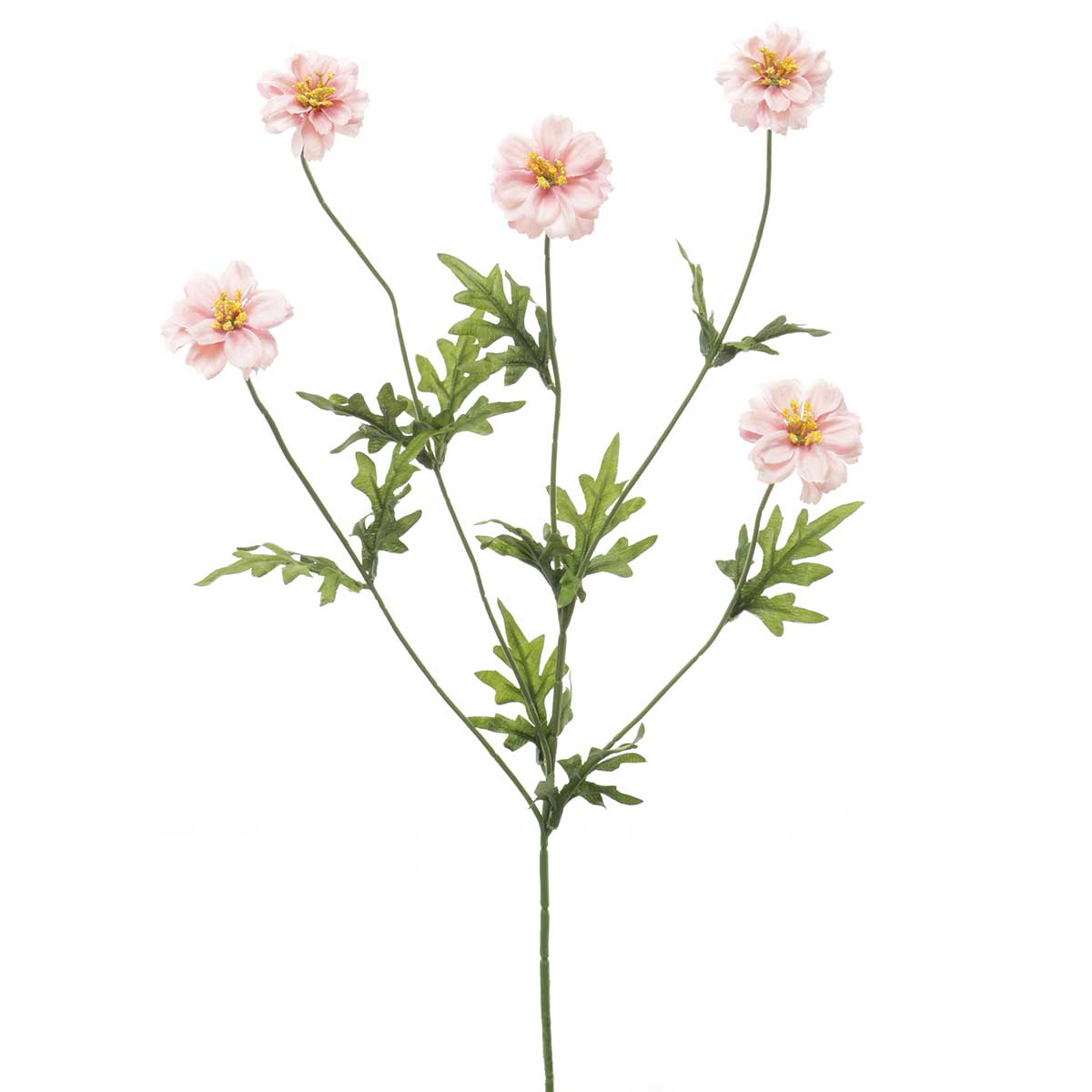 "MAISON COREOPSIS SPRAY 8""X30"""
