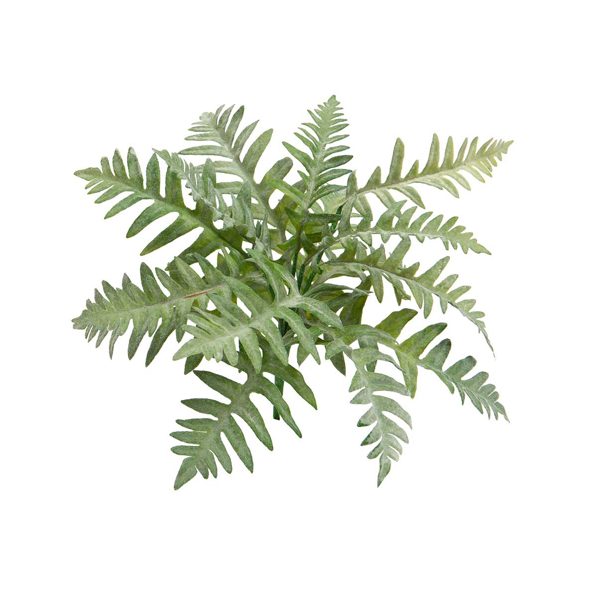 "BROAD FERN BUSH 15""X16"" GREY"