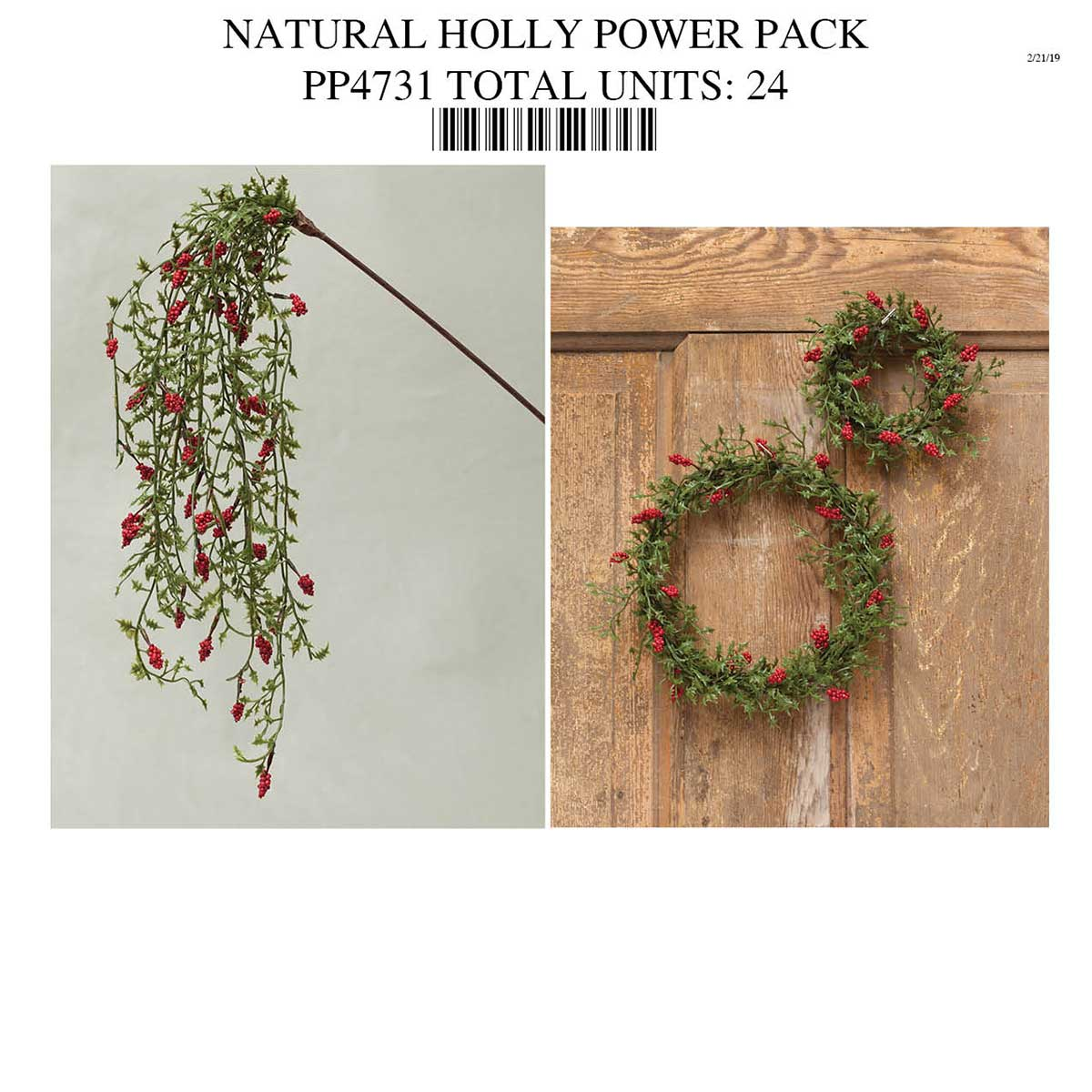 MINI NATURAL HOLLY POWER PACK PP4731