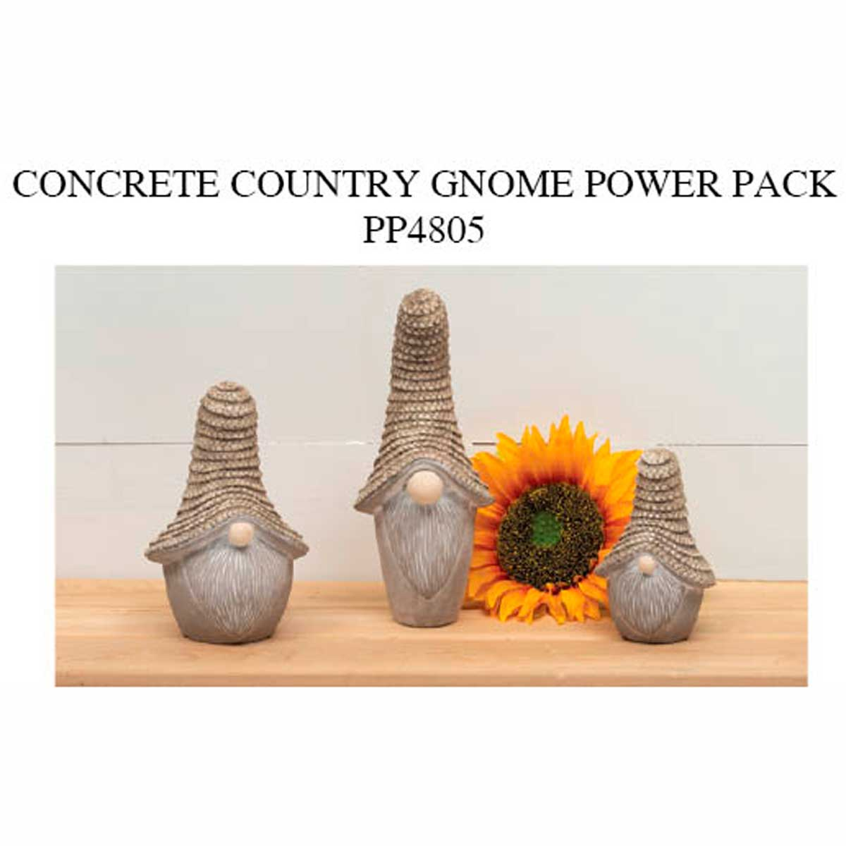 Country Gnome Power Pack 8 units PP4805
