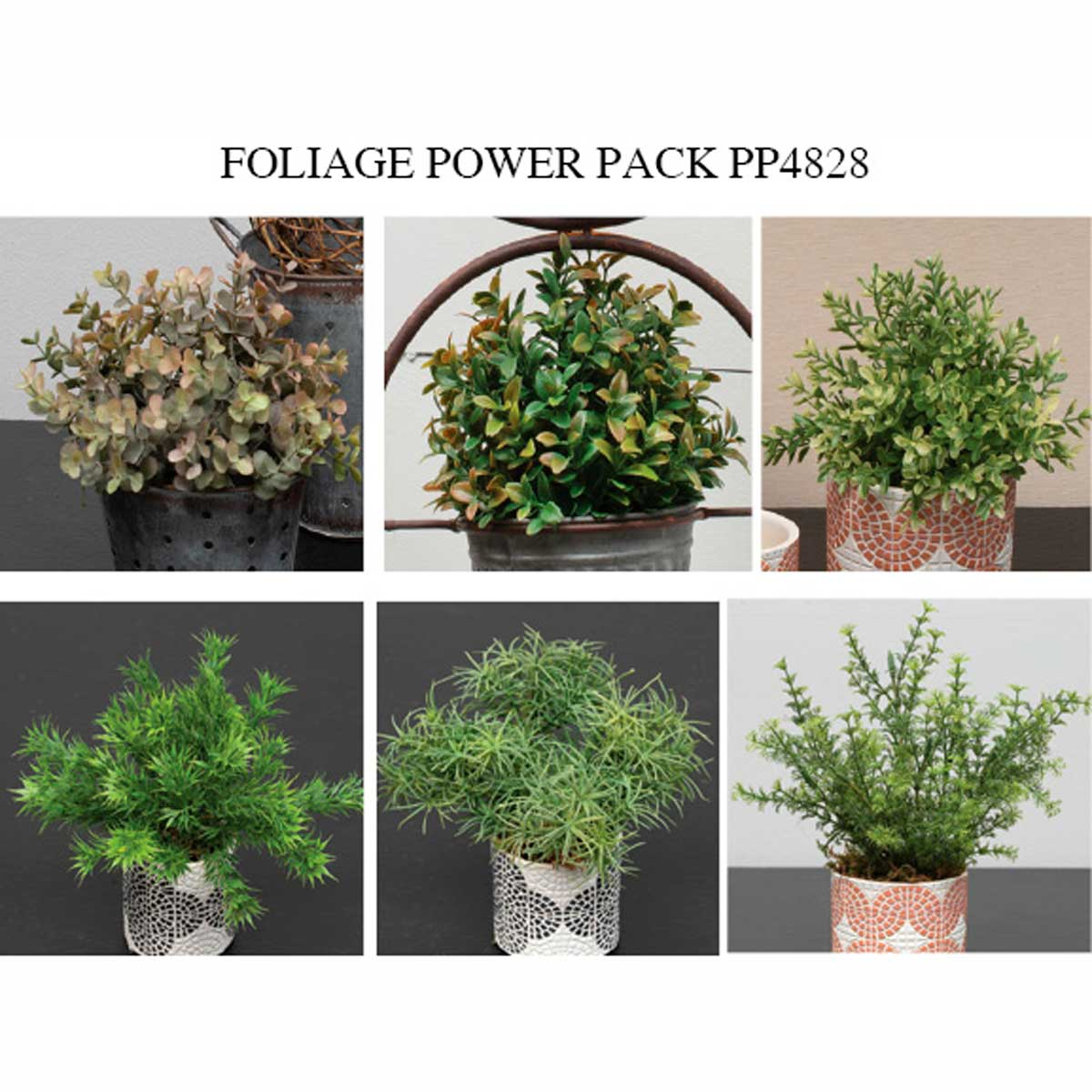 FOLIAGE POWER PACK 30 UNITS