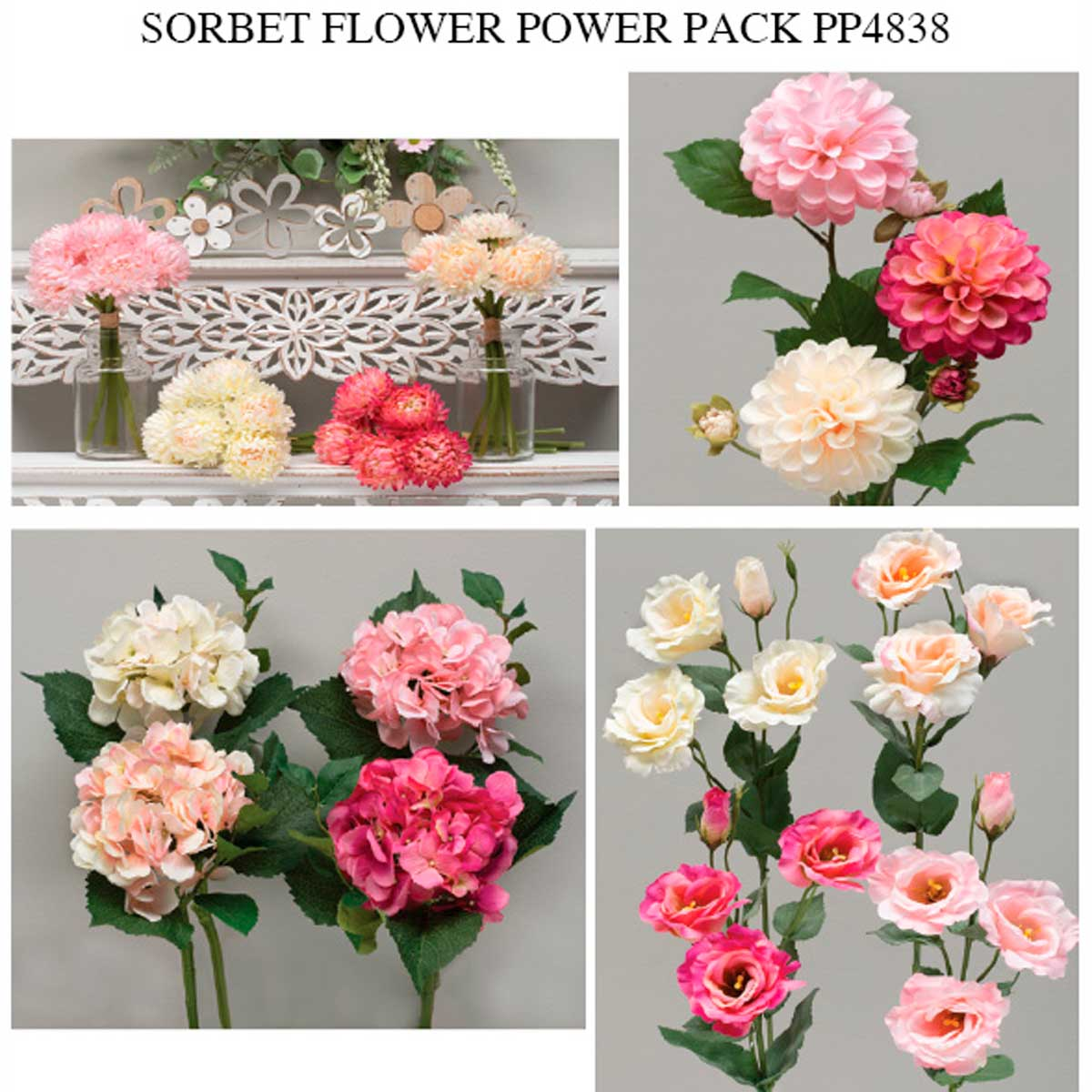 ROMANCE SORBET FLOWER POWER PACK 45 UNITS