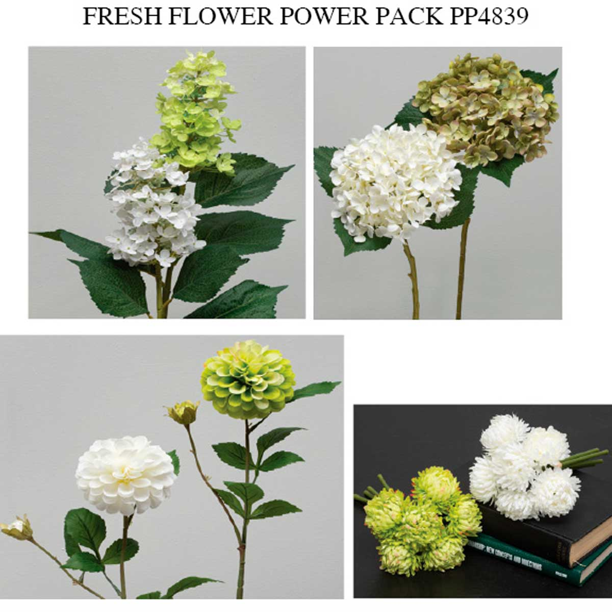 ENDLESS FRESH FLOWER POWER PACK 24 UNITS
