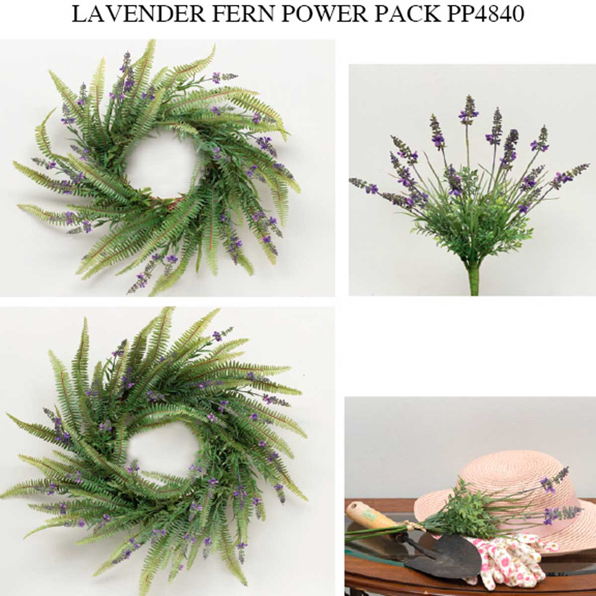 LAVENDER FERN POWER PACK 12 UNITS