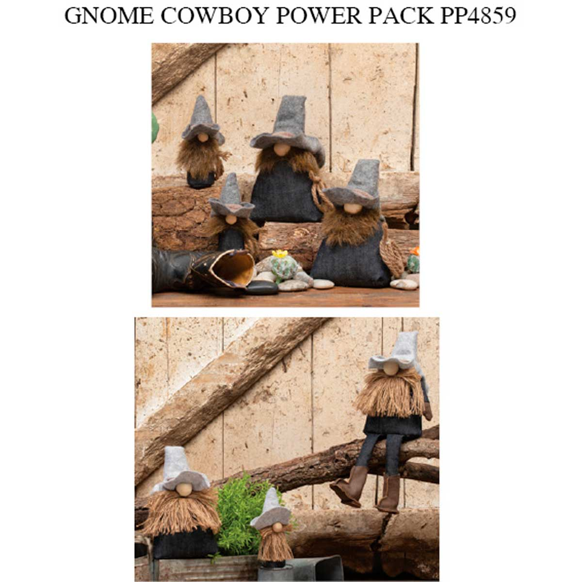 Cowboy Gnome Power Pack 30 units PP4859