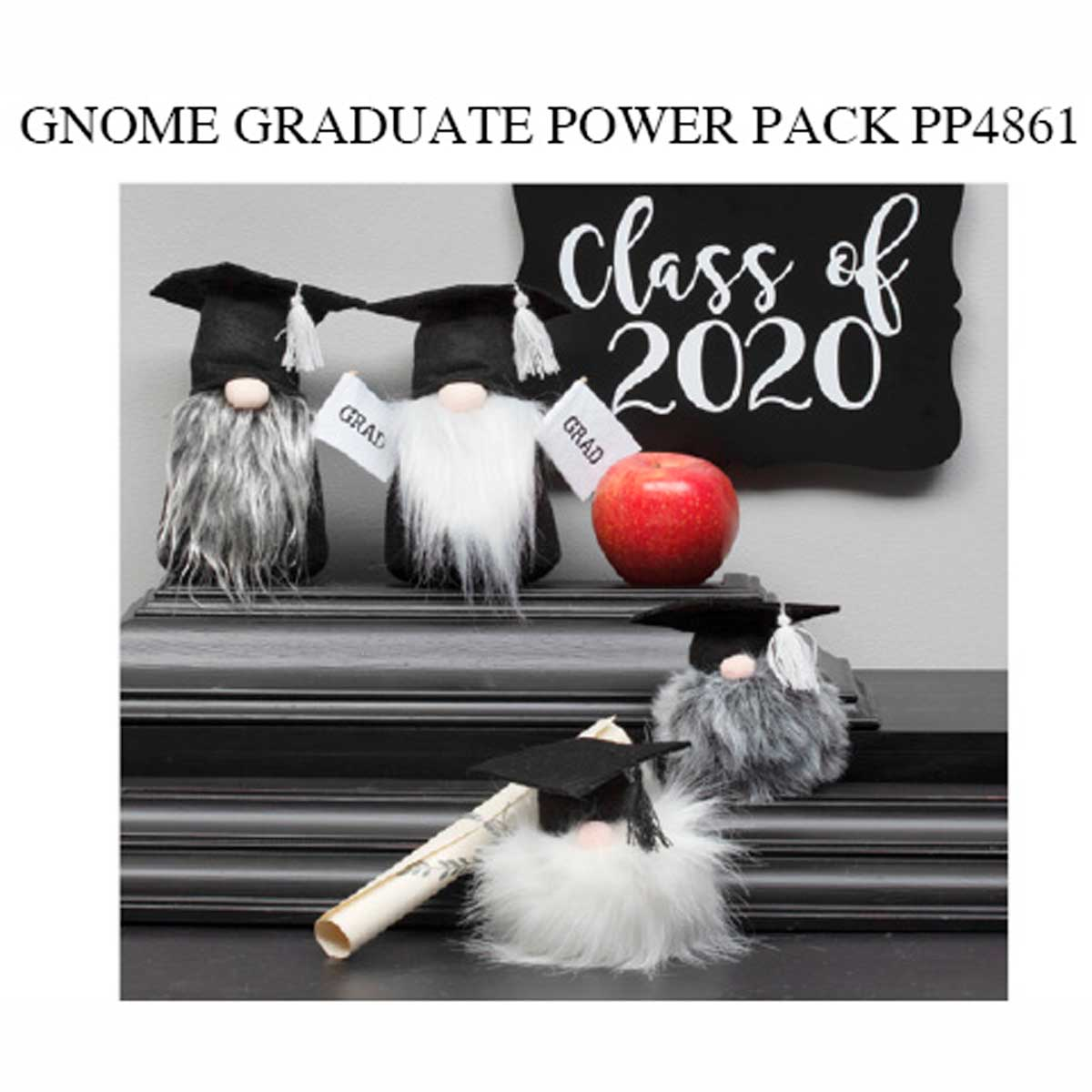 Graduate Gnome Power Pack 16 units PP4861