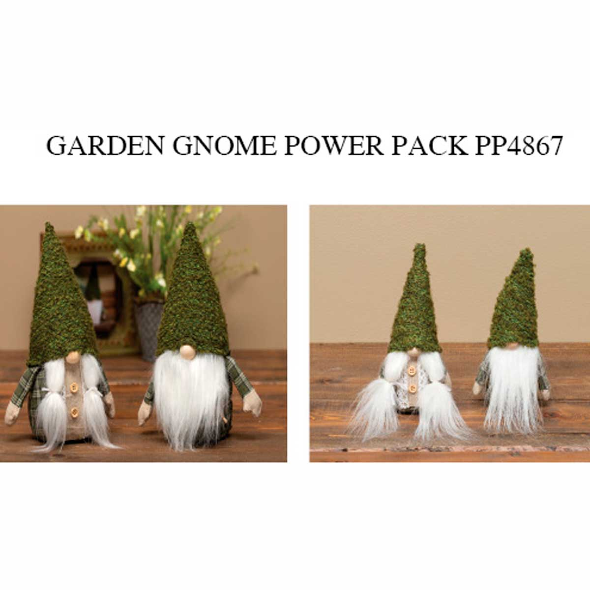 Garden Gnome Power Pack 12 units PP4867