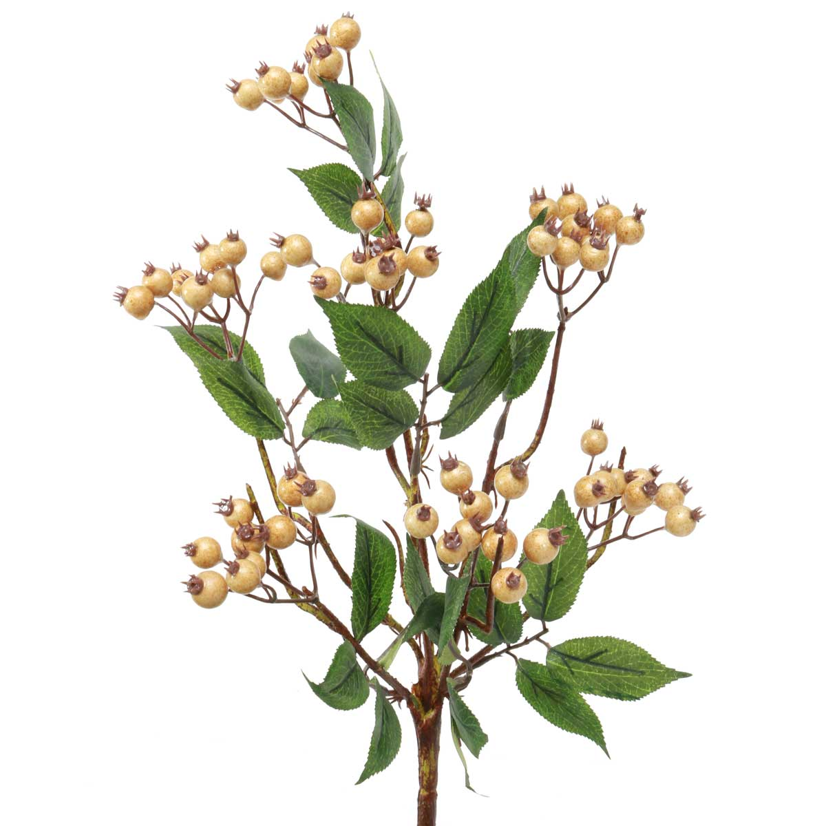 "PLUMP BERRY BUSH 14"" TAUPE"
