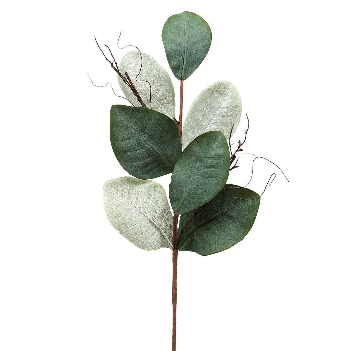 "SOUTHERN MAGNOLIA LEAF SPRAY 10""X30"""