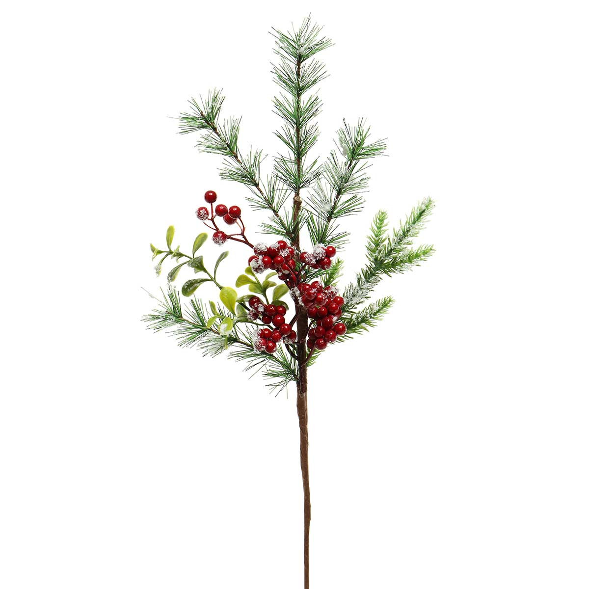 SNOWED RED BERRY, BOXWOOD AND