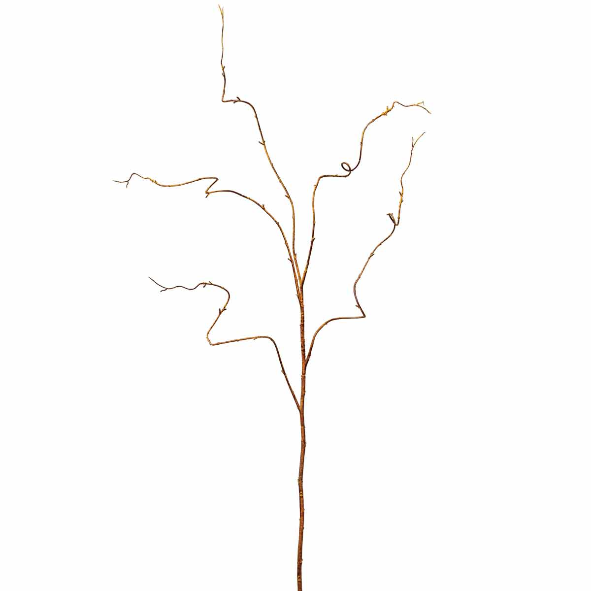 "KIWI TWIG VINE 47"" *50sp"