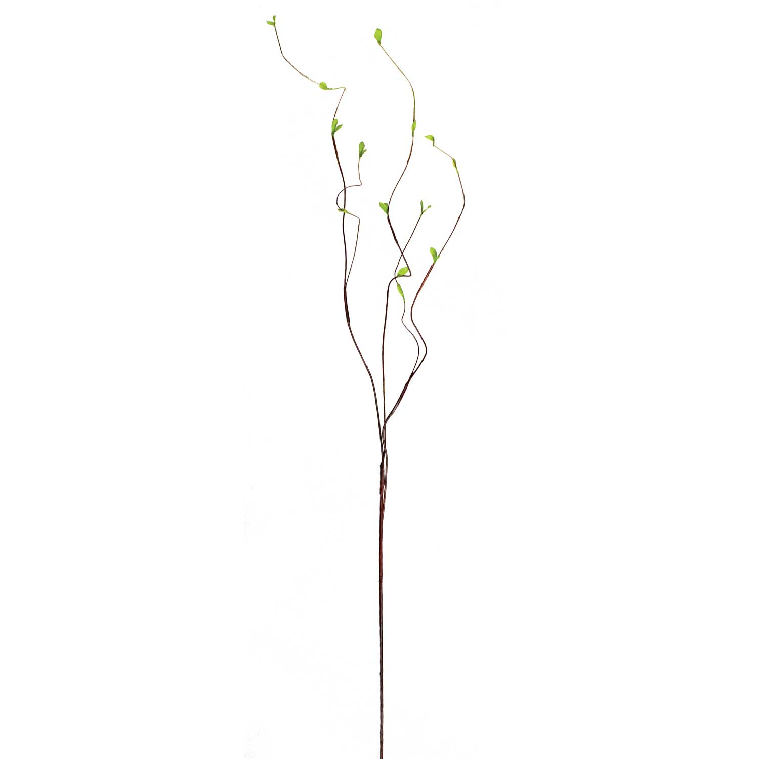 "KIWI TWIG LEAF VINE 45"" *50sp"