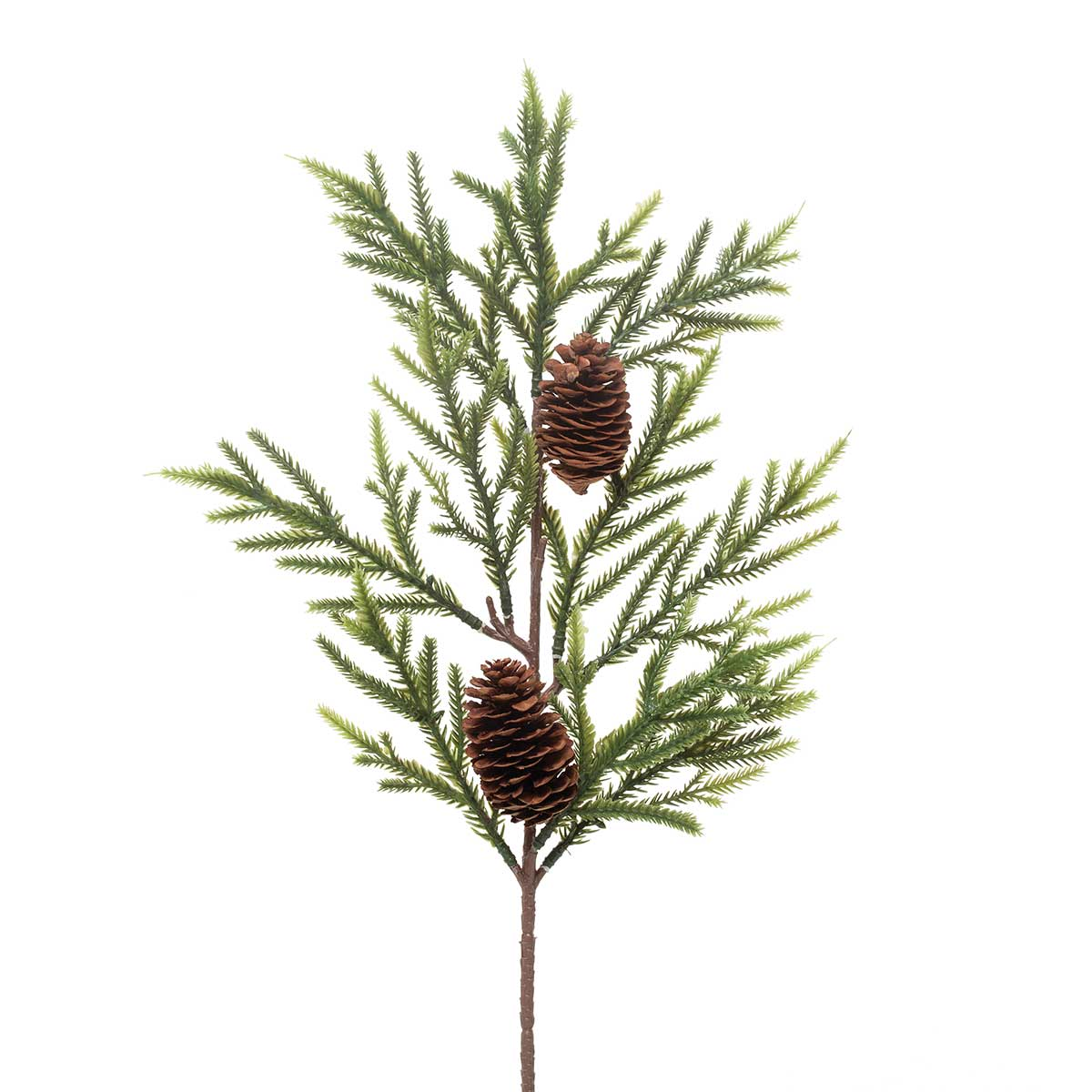 SPINDLE PINE SPRAY