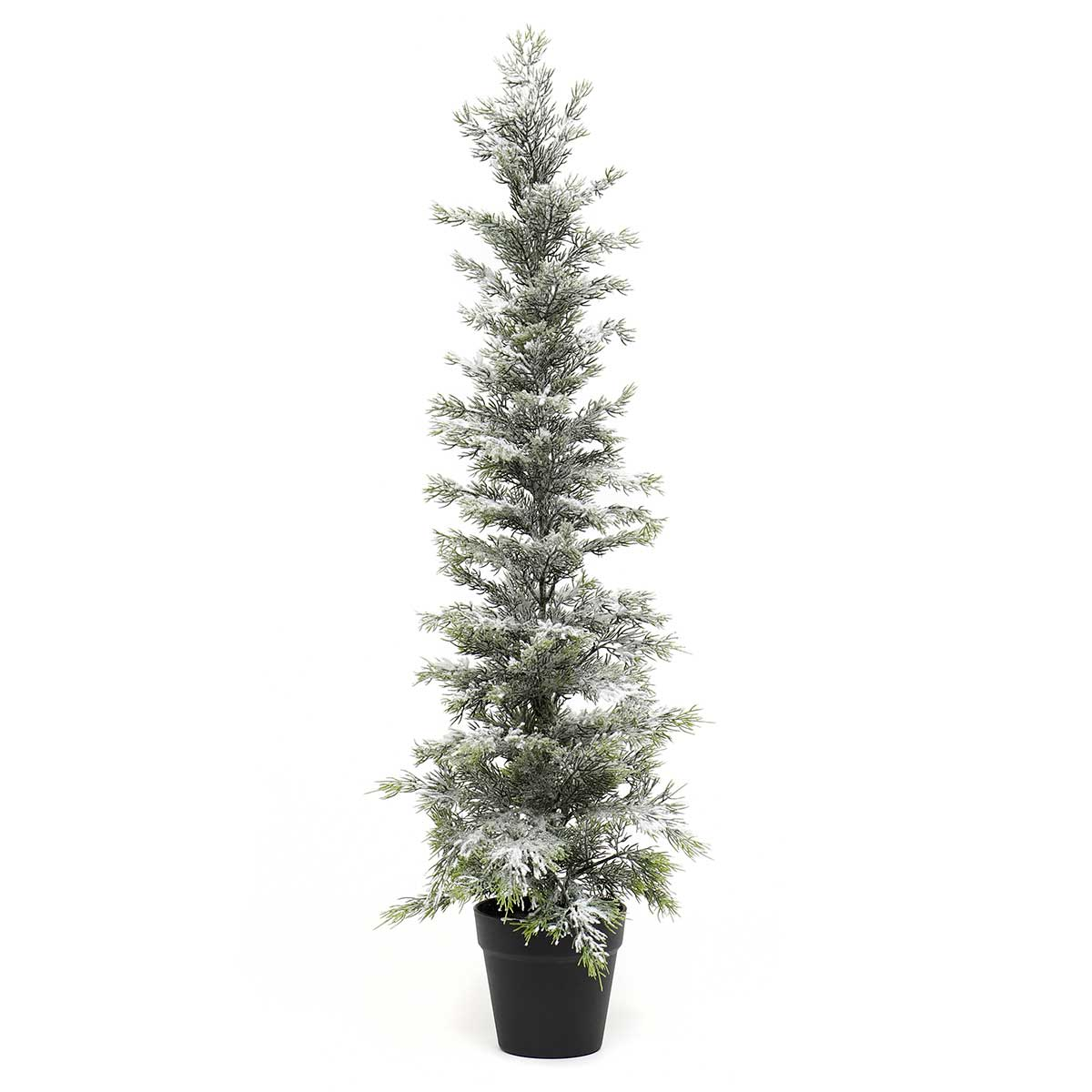 "SNOWED EVERGREEN TREE IN BLACK POT EXTRA LARGE 12""X36"""