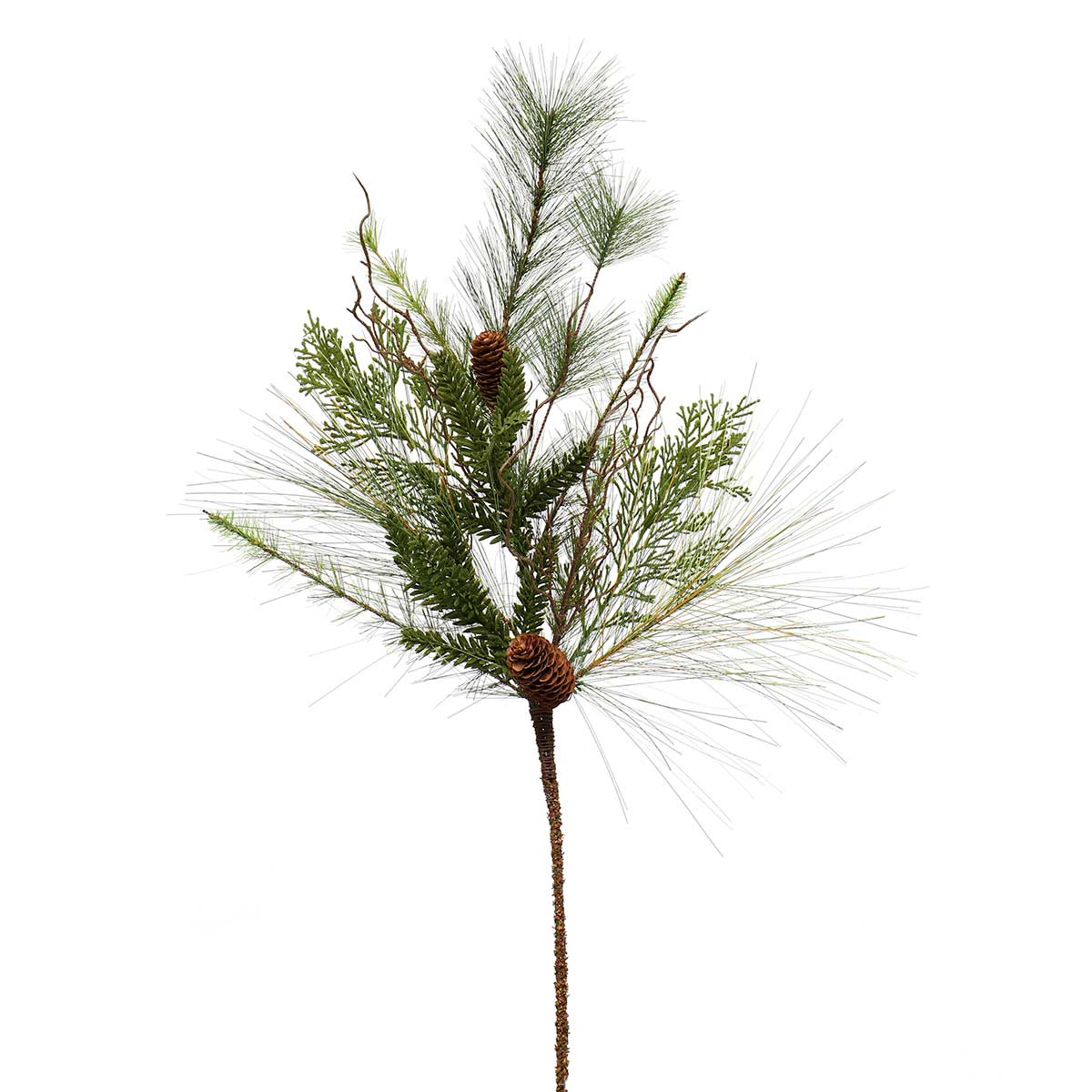MIXED LONG NEEDLE PINE