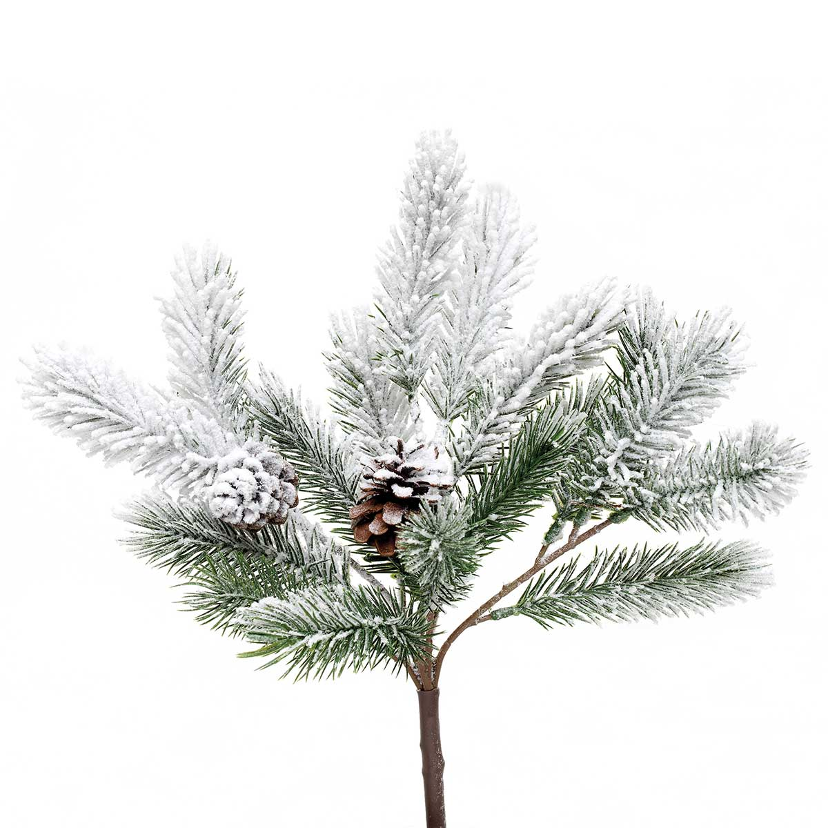 FROSTED PINE BUSH